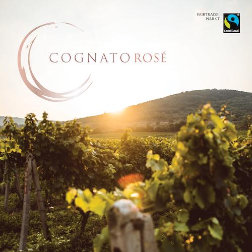 Cognato Rose