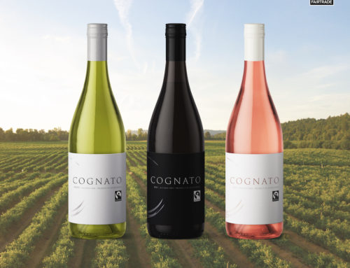 Cognato Wines are now available in the UK